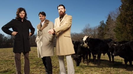 the avett brothers, cows, coat