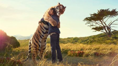 tiger, guy, hugs