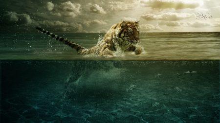 tiger, jump, sea