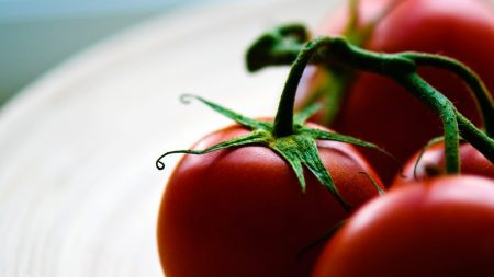 tomatoes, cherry tomatoes, red