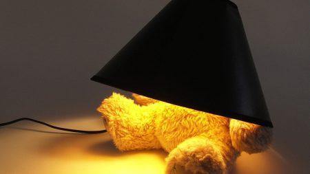 toy, bear, light