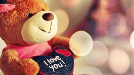 toy, soft, bear
