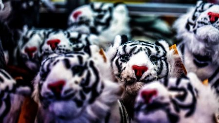 toy, tiger, set