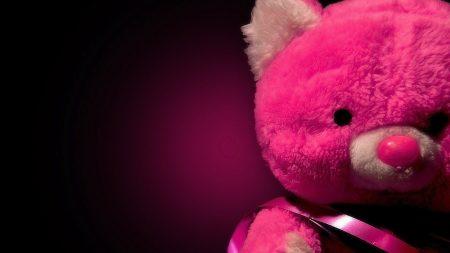 toys, soft, bear