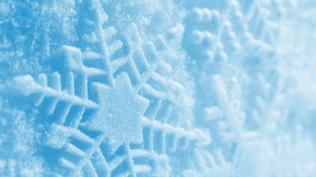 trail, snow, winter