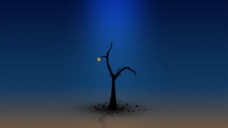 tree, lonely, blue