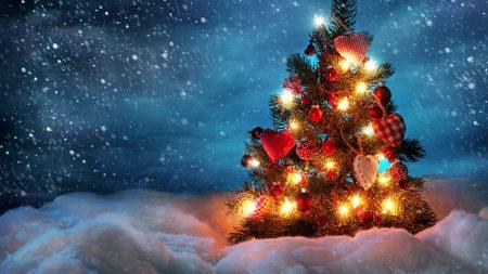 tree, new year, christmas