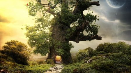 trees, green, entrance