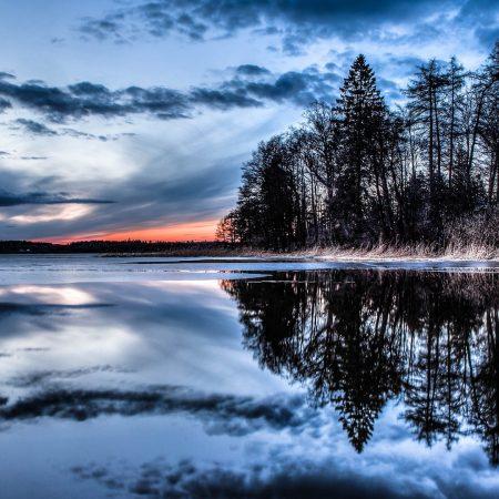 trees, lake, river