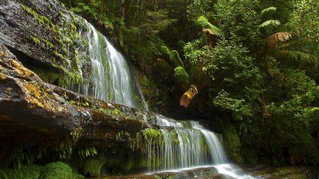 trees, landscape, waterfall