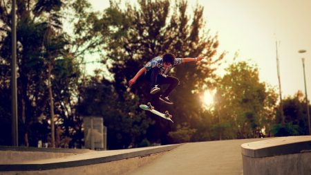 trees, skateboard, boy