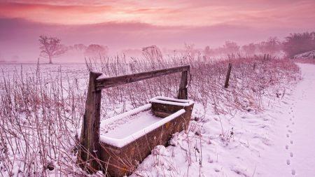 trough, winter, snow