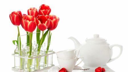 tulips, flowers, bottles