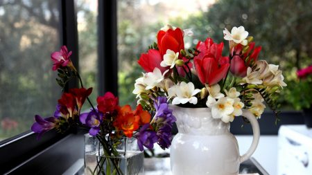tulips, freesia, flowers