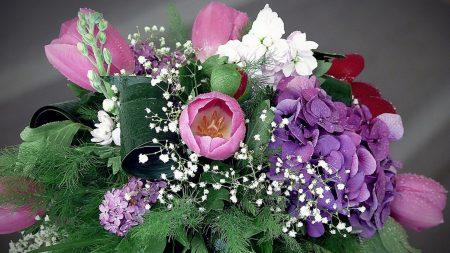 tulips, hydrangea, lilac