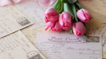 tulips, letters, postcards