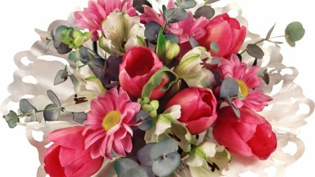tulips, lilies, flowers