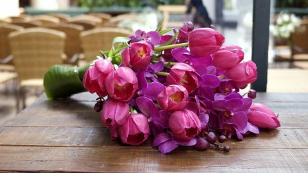 tulips, orchids, buds