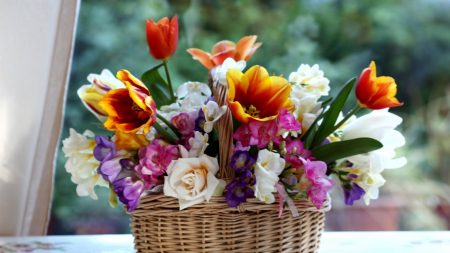 tulips, roses, freesia