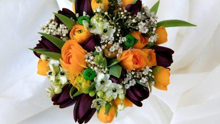 tulips, roses, ranunkulyus