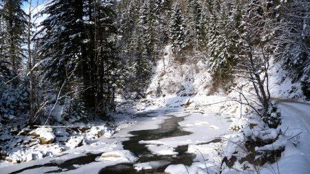 ukraine, carpathians, river