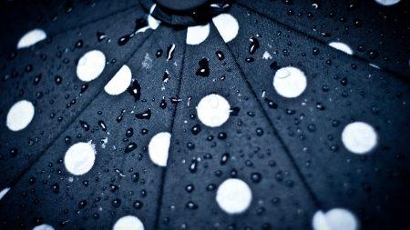umbrella, drops, background