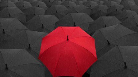 umbrellas, rain, gray