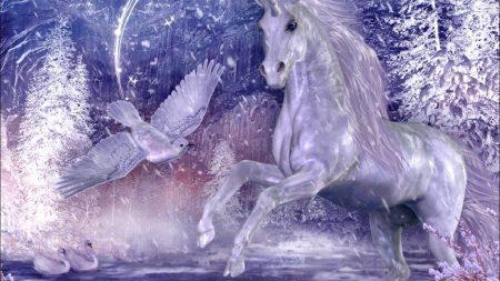 unicorn, wood, stars