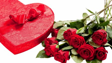 valentines day, gift, roses
