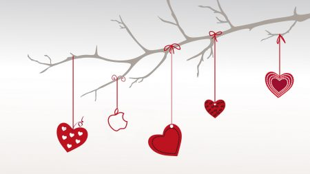 valentines day, hearts, branch