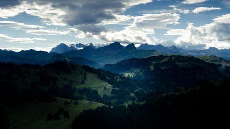 valley, forest, mountains