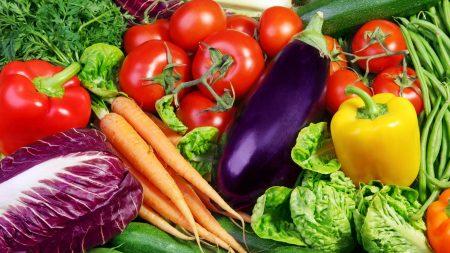 vegetables, herbs, lots of