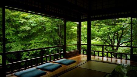 verandah, trees, greens
