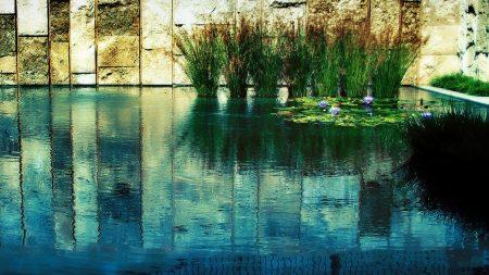wall, grass, water