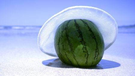 water-melon, berry, hat