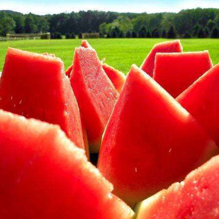 water-melon, segments, berry
