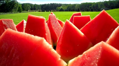 water-melon, slices, portions