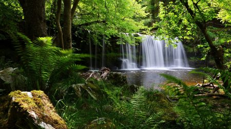 waterfall, grass, nature