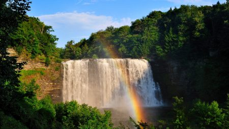 waterfall, rainbow, trees