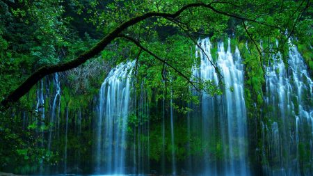 waterfall, trees, for