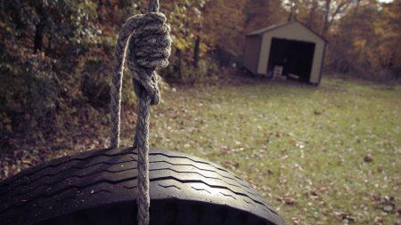 wheel, rope, swing