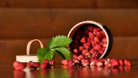 wild strawberry, pot, sheet