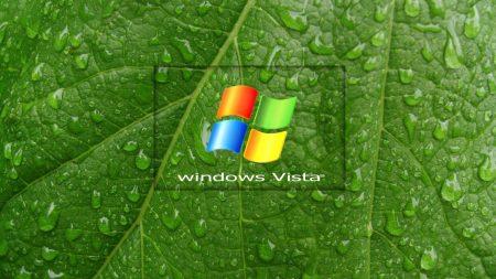 windows, vista, leaf