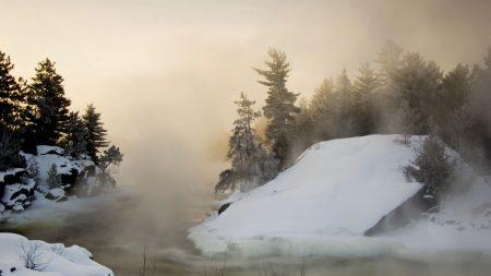winter, fog, snow