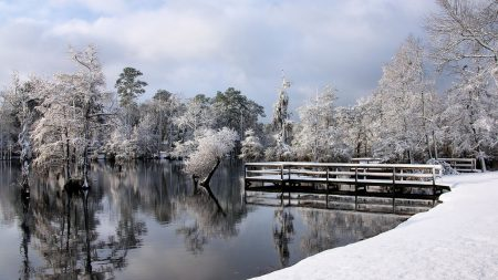 winter, lake, park