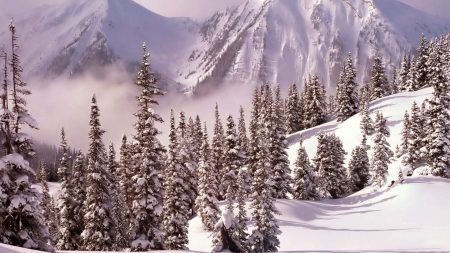 winter, mountains, snow