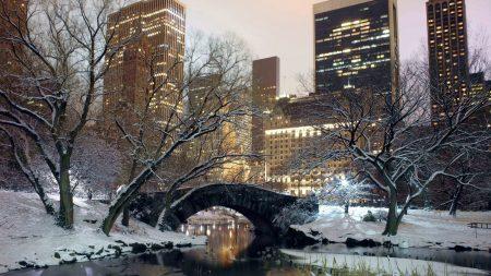 winter, park, america