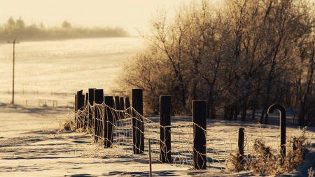 winter, snow, fence