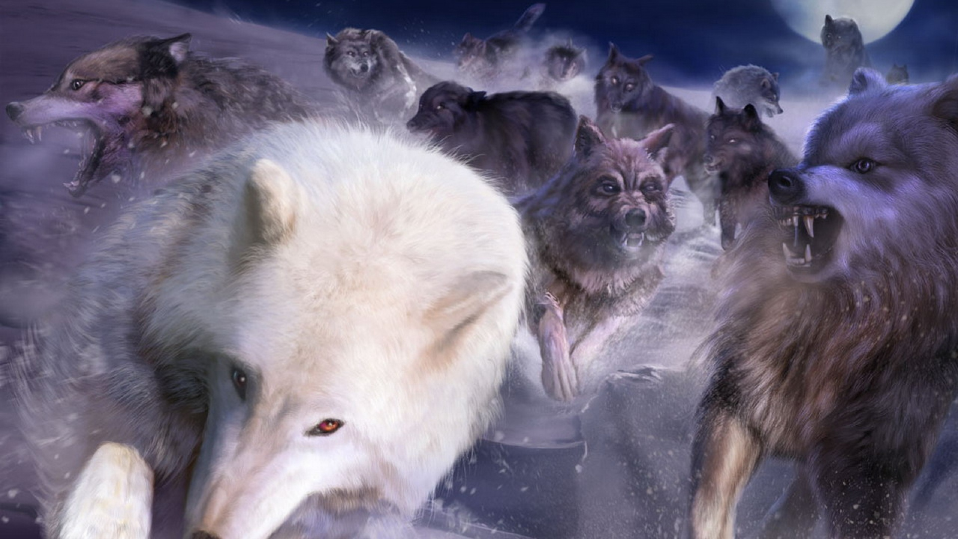 Earnings Disclaimer >> Download Wallpaper 1920x1080 wolves, pursuit, rage, white ...