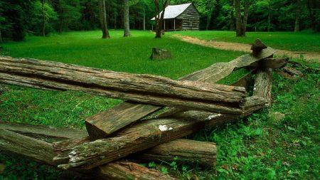 wood, glade, houses